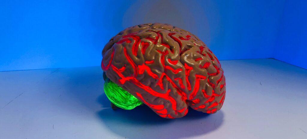 neuromarketing blog Vecchiato risonanza magnetica funzionale